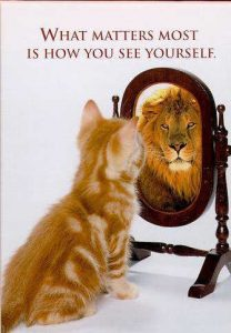 It Only Matters How The Narcissist Sees Themselves
